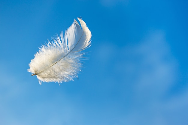 Single white feather floating in blue sky