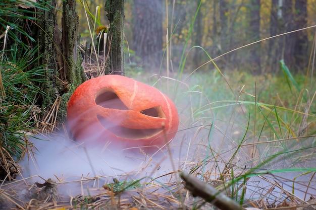 Зловещая тыква на хэллоуин в осеннем лесу в дыму или тумане, джек о фонарь на траве