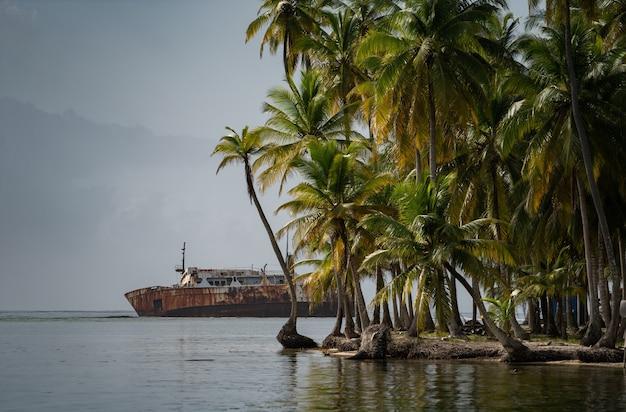 沈没した、さびた船がヤシの木のある熱帯の島の近くの海に横たわっています。冒険と旅行の概念。