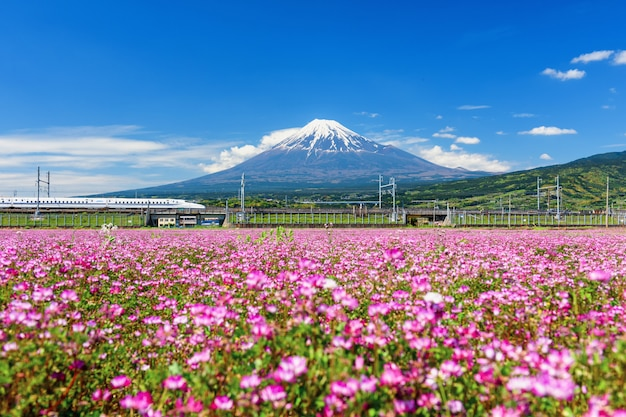 Sinkansen bullet train through mountain fuji