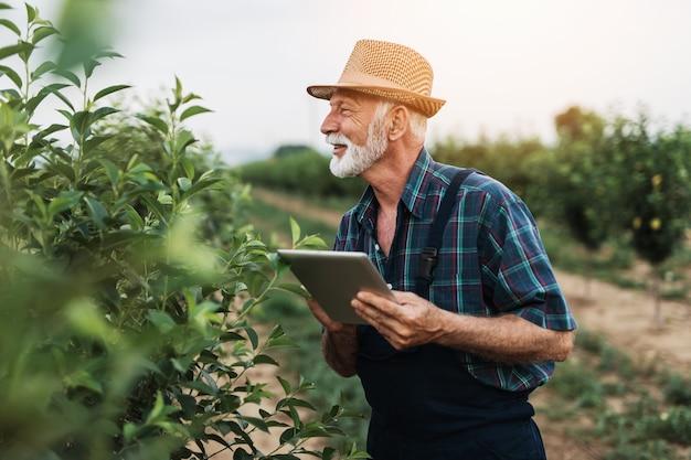 60세의 수염 농학자는 과수원에서 나무를 검사하고 태블릿 컴퓨터를 사용합니다.
