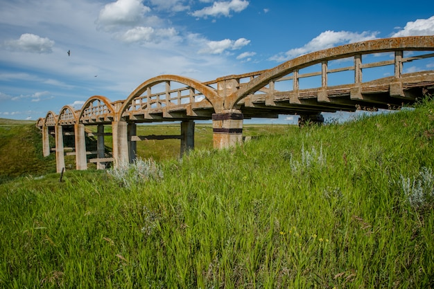 前景の緑の草とsk、スコットランドの古い地衣で覆われたコンクリート橋