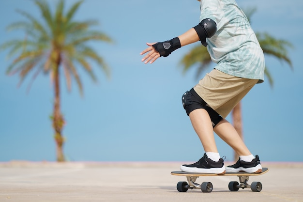 Skater with palm trees background