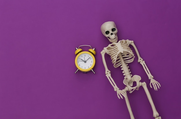 Skeleton and alarm clock on purple background.