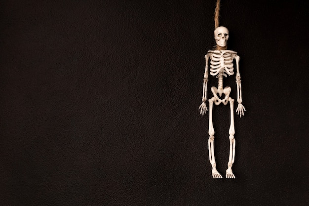 Skeleton in the form of a hanged man flat lay on a dark background with copy space. invitation for halloween holiday.