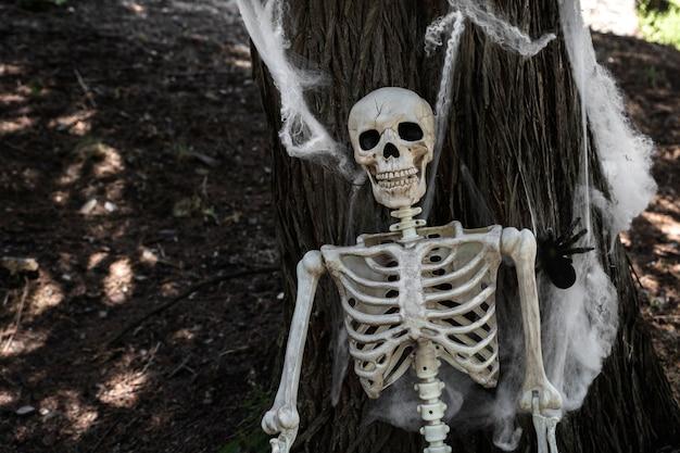 Skeleton leaning on tree with fake cobweb