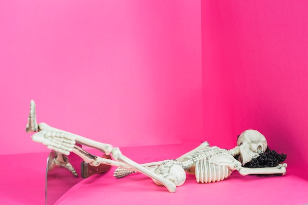 食卓に横たわっている骨格