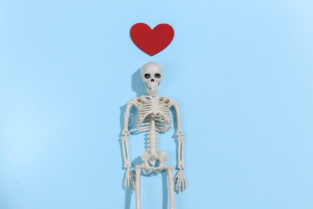 Skeleton and red decorative heart on a bright blue background. valentine's day or halloween theme.
