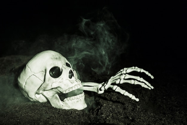 Skeleton's hand sticking out of skull on ground