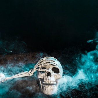 Skeleton's hand touching skull in blue fog on ground