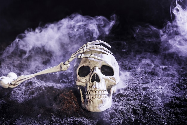 Skeleton's hand touching skull in fog on ground