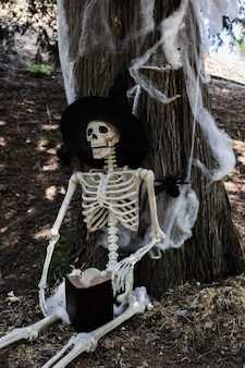 Skeleton in witch hat sitting near tree