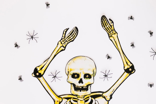 Skeleton with hands up surrounded by spiders
