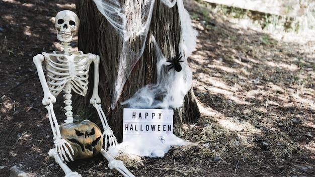 Skeleton with pumpkin sitting near halloween board leaning on wood