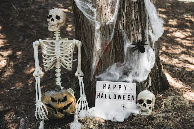 Skeleton with pumpkin sitting near halloween tablet leaning on tree