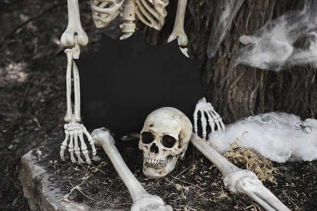 Skeleton with tablet in blot form sitting near skull and leaning on tree