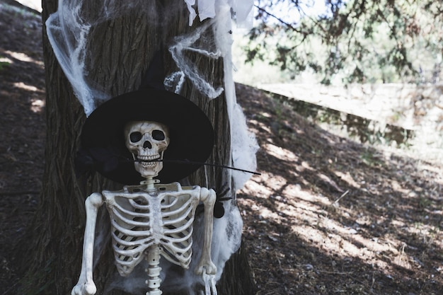Skeleton with witch hat leaning on tree and holding rose in teeth