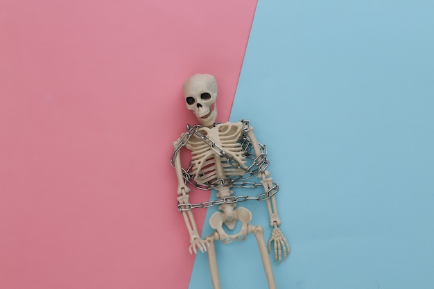 Skeleton wrapped in metal chain on pink blue pastel. halloween decoration, scary theme