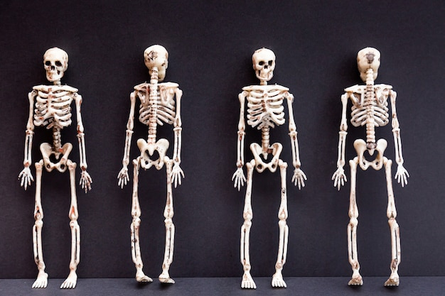Skeletons on a black background. day of the death concept. halloween card.