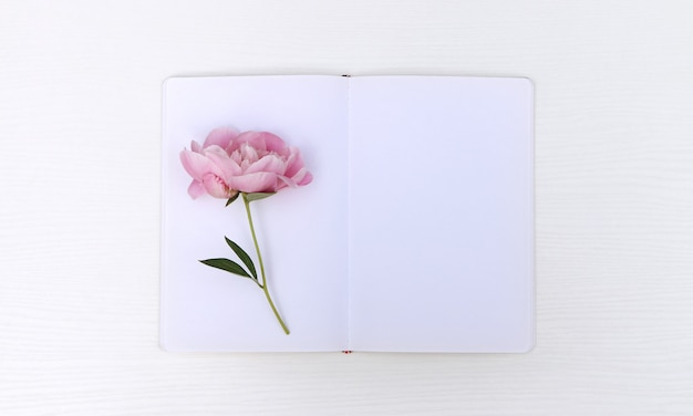 Sketchbook with a peony
