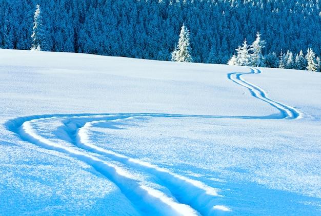 Лыжный след на поверхности снега и зимний горный еловый лес позади.