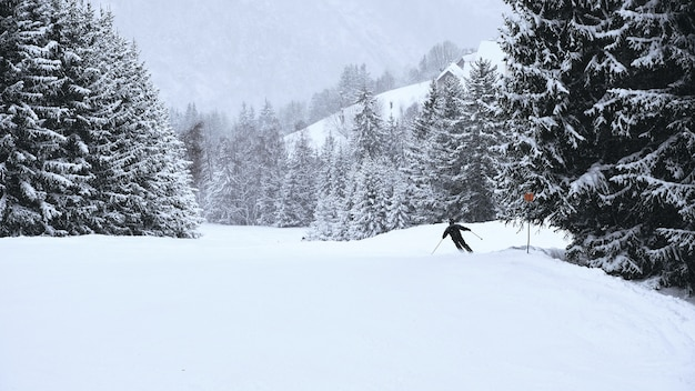 프랑스 알프스에서 나무가 늘어선 alpe d huez 스키 리조트의 슬로프를 통과하는 스키어