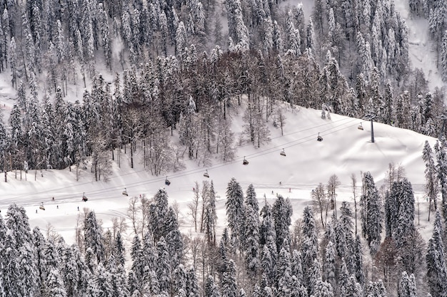 러시아 소치 krasnaya polyana의 산악 스키 리조트에서 스키와 스노우 보드 타기.