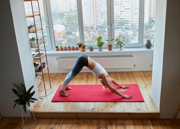 Skilled yoga practitioner does adho mukha svanasana on light balcony with houseplants