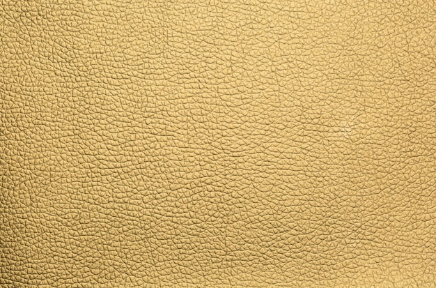 Skin leather background
