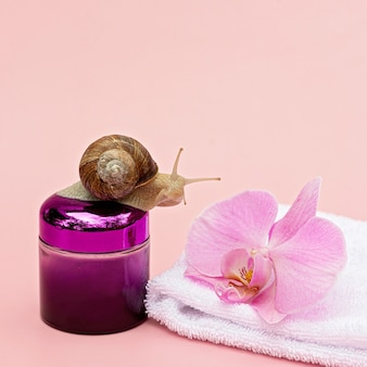 Skin rejuvenation cosmetics on pink background with snail and orchid flower and white towel, snail mucin cream, skin hydration, beauty, health, spa concept. soft selective focus, copy space.