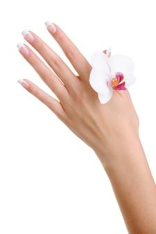 スキンケアと白で隔離される花を持つ女性の手の純度
