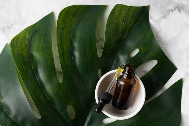 Skincare products on big green leaf