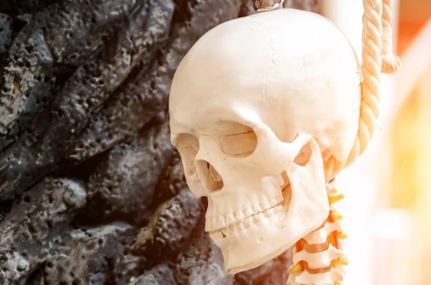 木の首の頭蓋骨と吊るされたスケルトン。