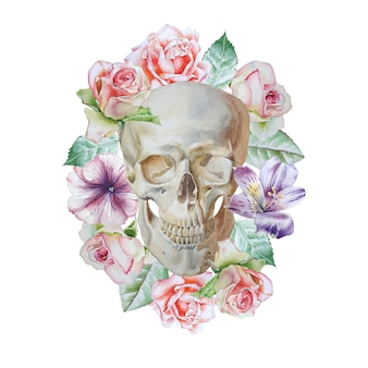 Skull and flowers on white