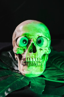 Skull illuminated by green light