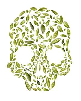 白い背景、エココンセプト、健康に緑の葉で作られた頭蓋骨