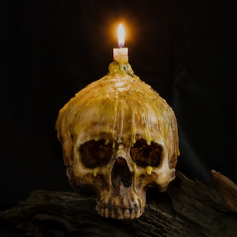 Skull with candle light on top with clipping path use for halloween concept