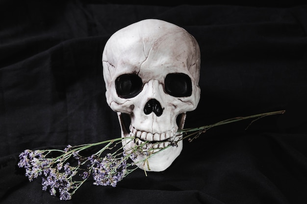 Skull with flowers in mouth