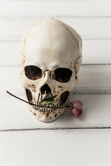 Skull with pink flower