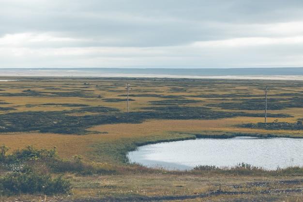 Skutustadir in the lake myvatn area, iceland