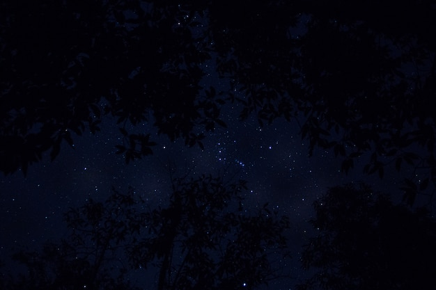 Sky background and stars at night