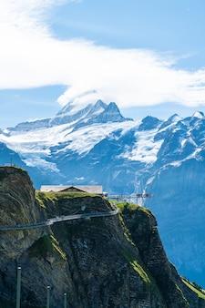 Прогулка по скалистой скале на первой вершине горы альп в гриндельвальде, швейцария