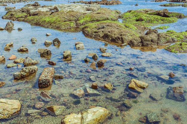 空の屋外の波の石の島の海藻