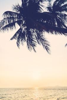 空、海、ヤシの海の自然