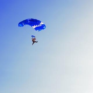 Skydiver  diving
