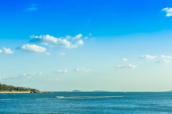 Skyline panorama grand trees the sea sun