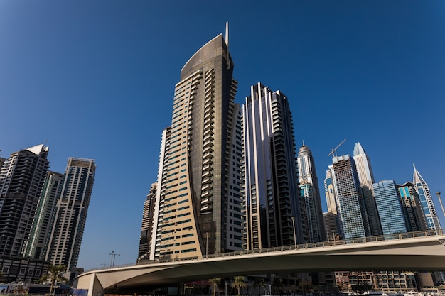Skyscrapers in dubai marina.