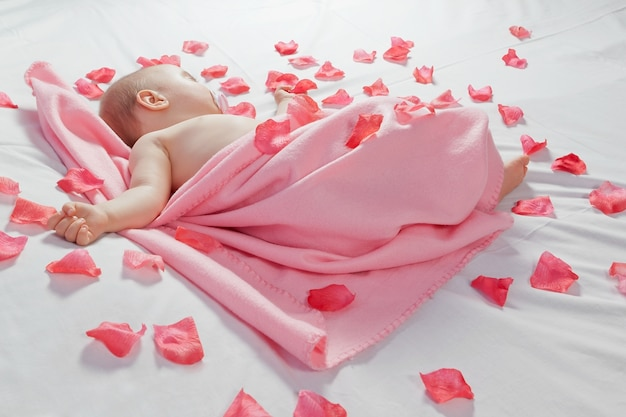 Sleeping baby covered with a pink blanket around him and rose petals.
