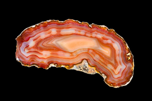 Slice of agate isolated on black background