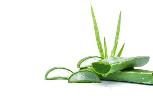 Slice aloe vera fresh leaf isolated on white background